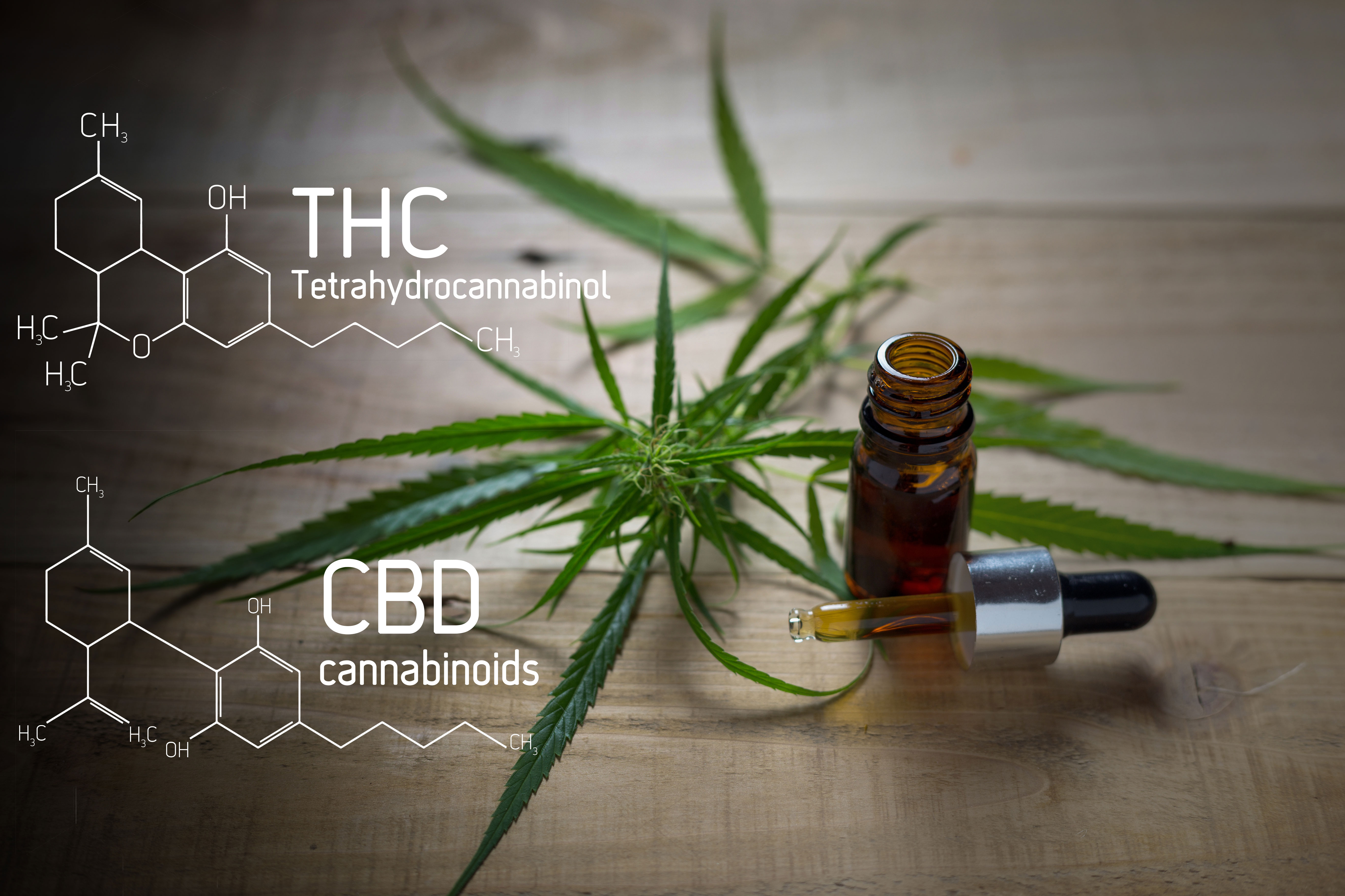 Finding the Right THC/CBD Ratios